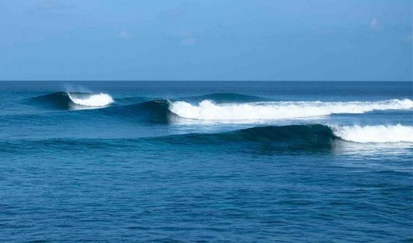 There are 7 waves near Kandooma Resort, ranging from fun and cruisy waves, to more challenging options