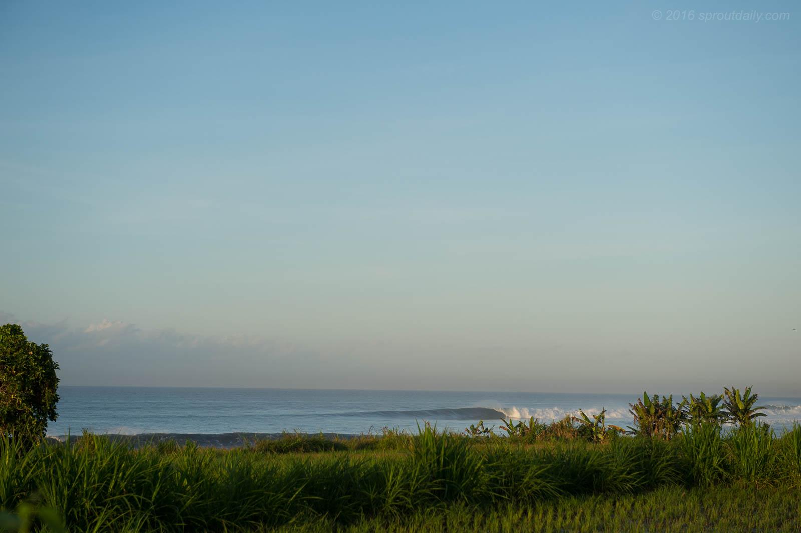 East Coast Bali gem. - Sproutdaily.com