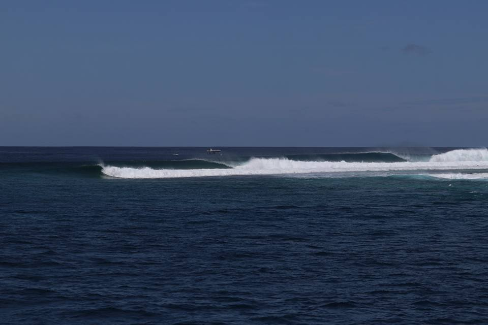 A better line up you will not see. Central Atolls August 20