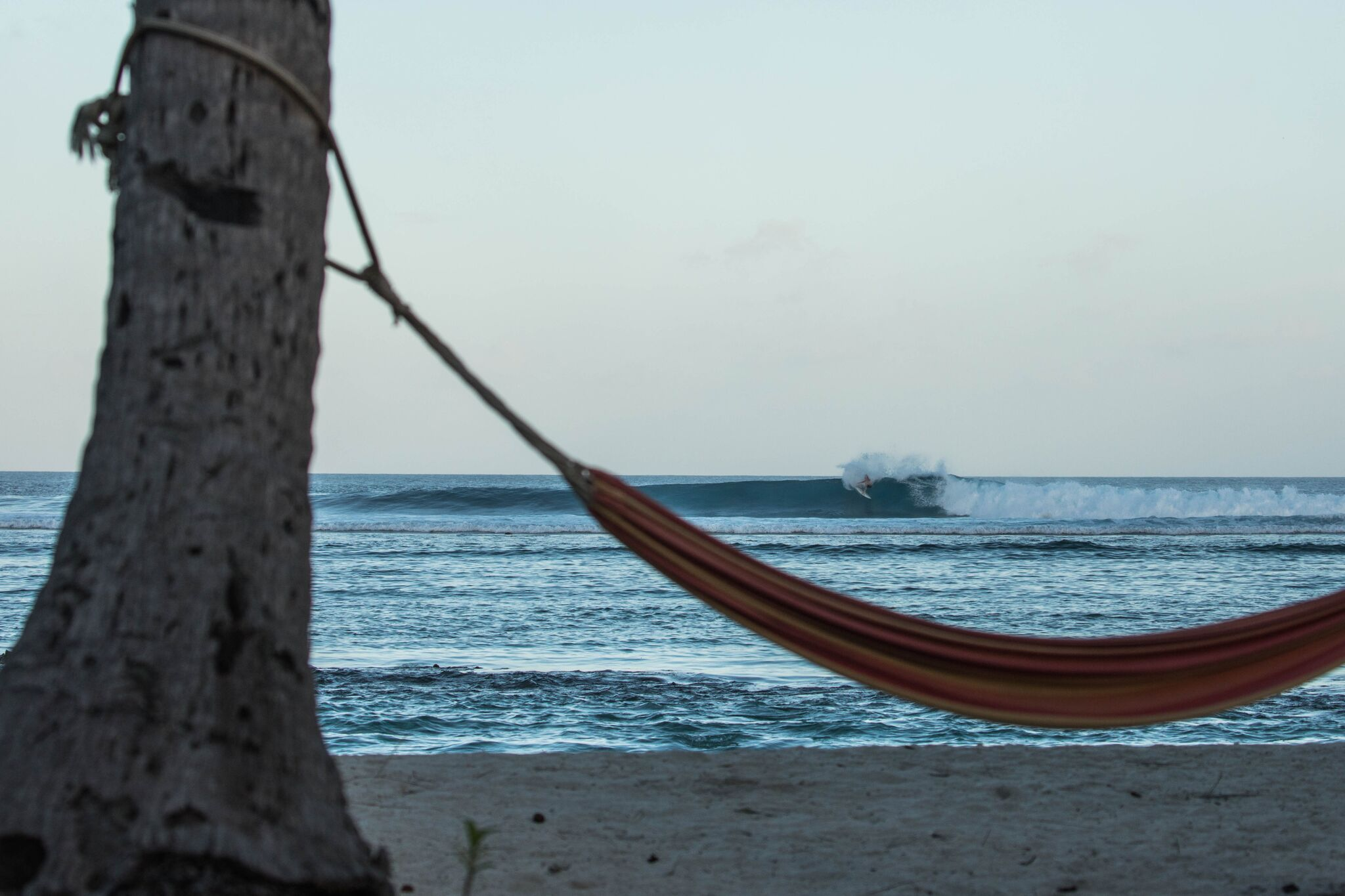 Hammock slasher at cokes. Photo - Andy Potts C/O The Perfect Wave