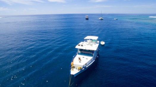 Southern Atolls Maldives Surf