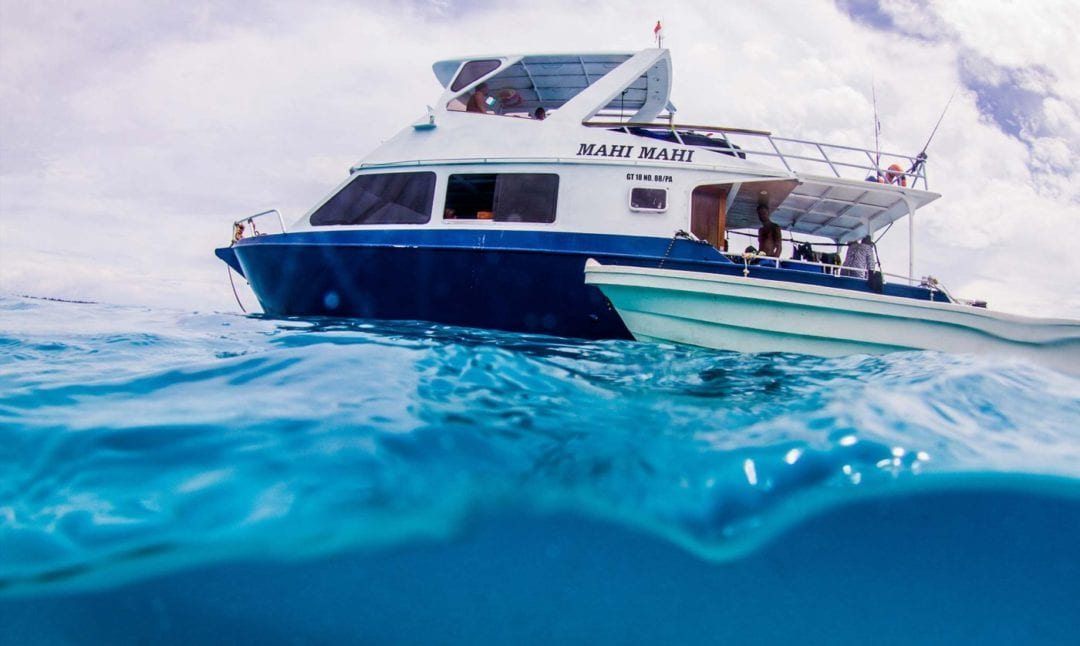 Mahi Mahi Surf Charter Simeulue