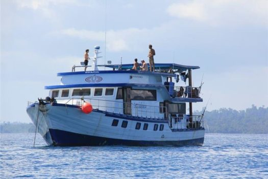 Melaleuca Mentawai surf charter